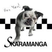 www.skaramanga.de
